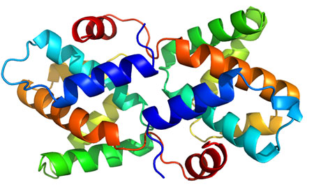 Structure of the Reston ebolavirus VP30 C-terminal domain