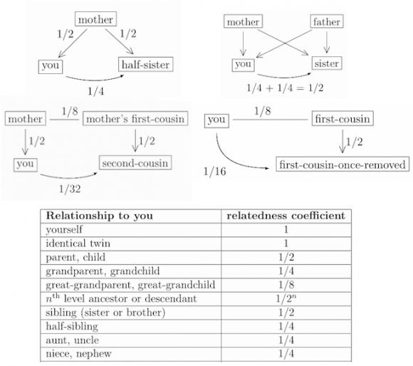 Dibujo20150606 family relativeness - source Jeffrey S Rosenthal