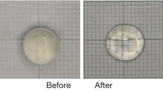 Dibujo20150722 lanosterol - eye lens - in petri dish - nature com