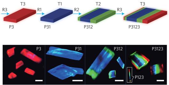 Dibujo20150728 Growth procedure of multi-segment heterostructure nanosheets. - nature nano