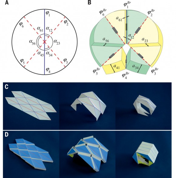 Dibujo20150729 The diamond origami pattern - science mag org