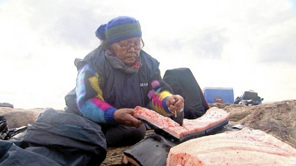 Dibujo20150919 meat bowhead being cut up by an Inuit - photo by aptn