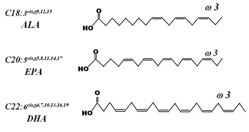 Dibujo20150919 omega-3 formulae - smarternootropics com