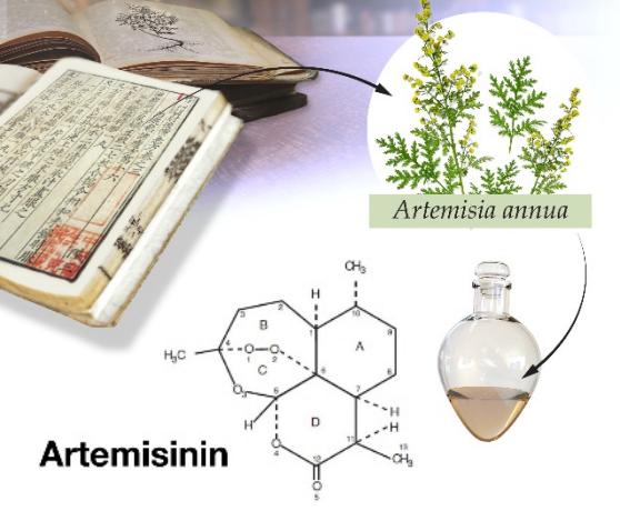 Dibujo201401005 artemisinin molecule - artemisia plant - malaria - tu - medicine nobel prize 2015
