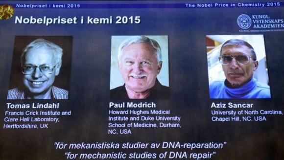 Dibujo20151007 nobel prize chemistry 2015 - lindahl - mondrich - Sancar