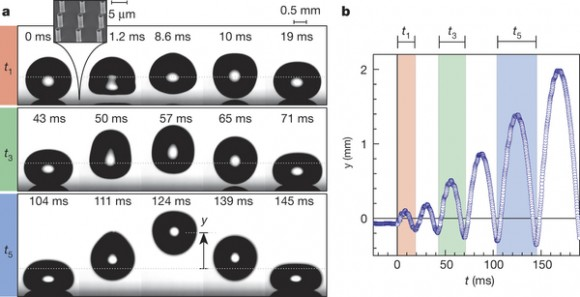 Dibujo20151105 Droplet trampolining on a rigid surface nature15738-f1