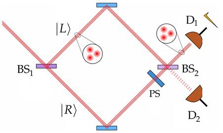 Dibujo20160126 quantum pigeon principle experimental schema pnas org