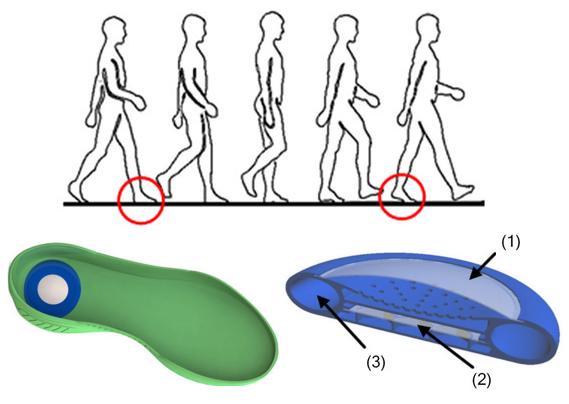 Dibujo20160501 Energy harvesting from human locomotion scientific reports srep16537-f3