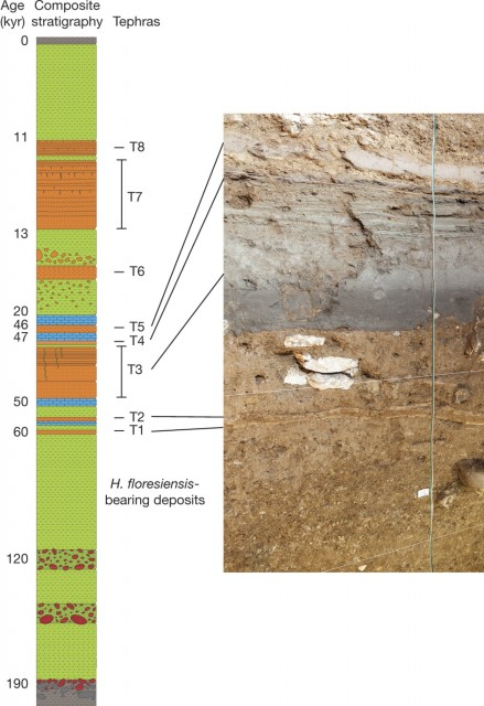 Dibujo20160704 Composite stratigraphic section of deposits at Liang Bua with approximate ages nature17179-f2