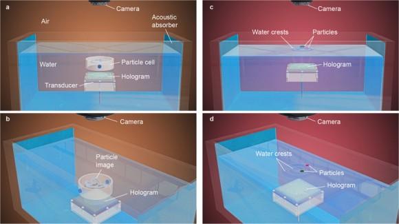 dibujo20160927-experimental-set-up-for-waterborne-ultrasound-studies-nature19755-sf9