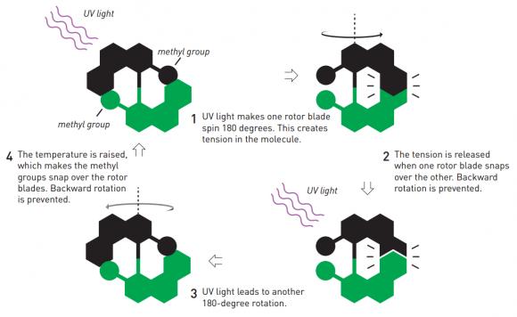dibujo20161005-ben-feringa-first-molecular-motor-to-spin-in-a-particular-direction-nobelprize-org