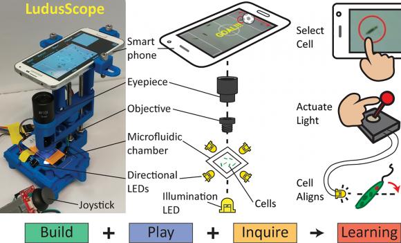dibujo20161010-ludusscope-smartphone-microscopy-for-life-science-education-journal-pone-0162602-g001
