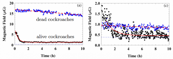 Dibujo20170213 Magnetic field decay from magnetised American cockroaches arxiv 1702 00538