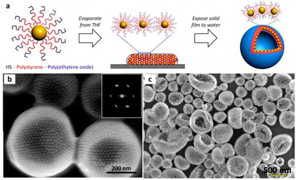 Dibujo20170314 self-assembly au nanocrystals capped with block copolymer ligands acs chemrev 6b00196
