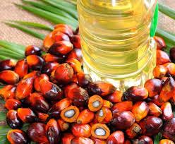 Dibujo20170407 aceite de palma