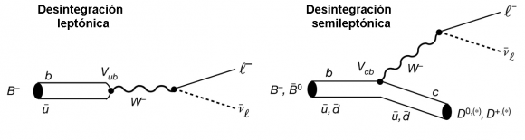 Dibujo20170609 leptonic and semileptonic decay b-meson nature22346-f1