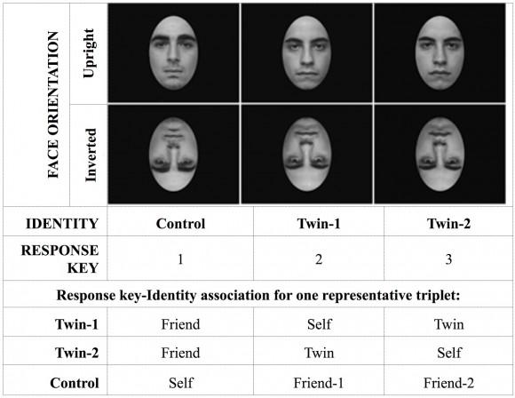 Dibujo20170920 face recognition monozygotic twin couples journal pone 0120900 g001