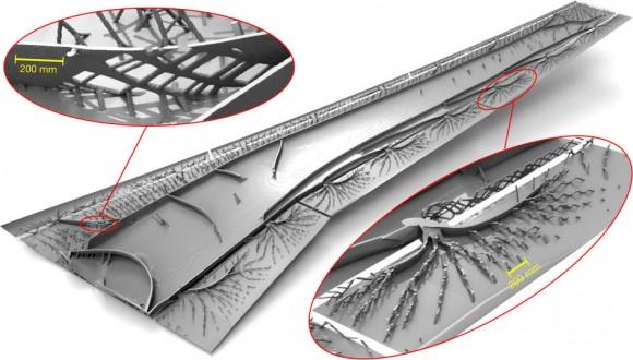 Dibujo20171006 Optimized wing structure nature23911-f1