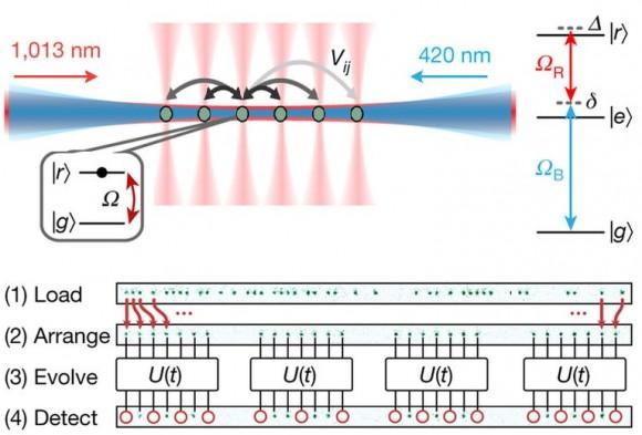 Dibujo20171129 Experimental platform 51-atom quantum simulator nature24622-f1