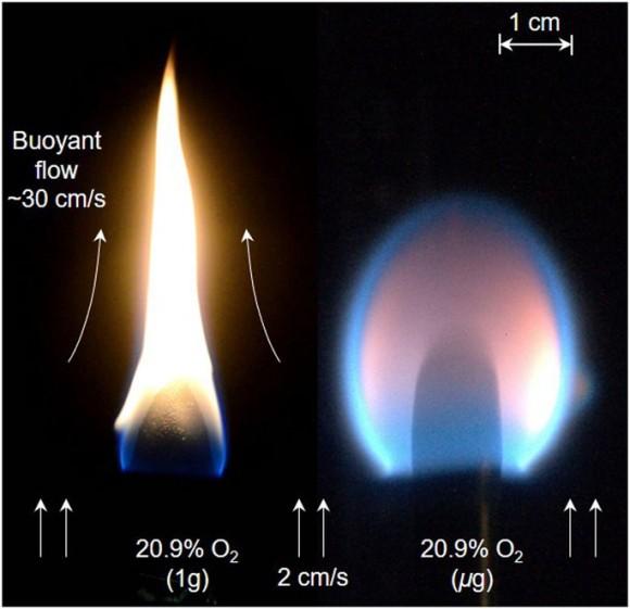 Dibujo20180111 pmma rod flame spread normal gravity and microgravity Scientific Reports 41598_2017_18398