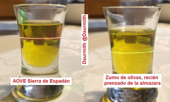 Dibujo20180201 daurmith photos green laser extra olive oil vs olive juice