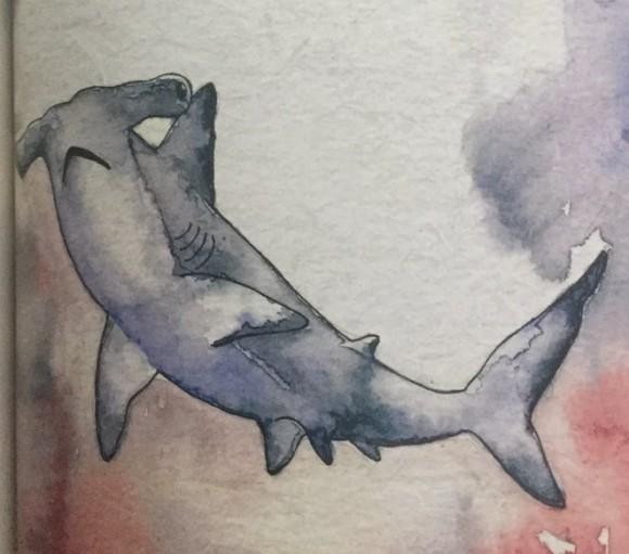 Dibujo20180218 tiburon maria lamprech grandio manual de linternas libros y literatura