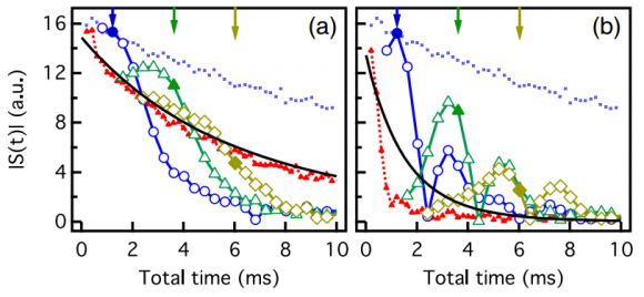 Dibujo20180506 decay envelope bounds discrete time crystal response PhysRevB 97 184301