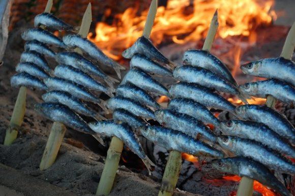 'Ciencia para todos' (SER Málaga): La ciencia del espeto de sardinas