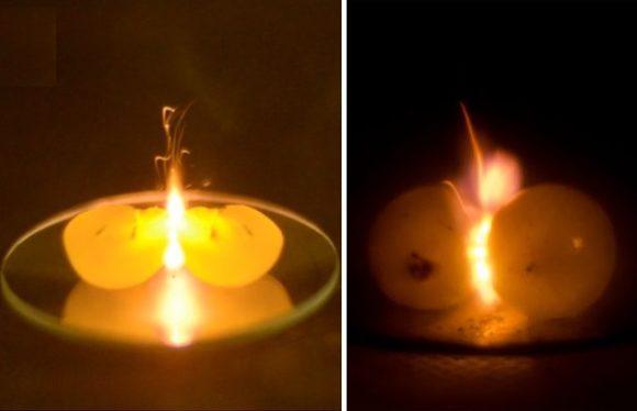 Por qué las uvas producen un plasma en un horno microondas