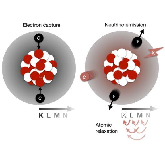 XENON1T observa la captura doble beta de dos electrones con emisión de dos neutrinos