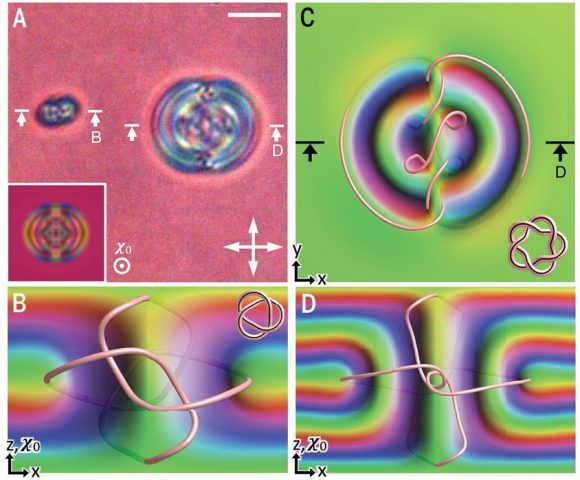 Helinudones (heliknotons): nudos tridimensionales en cristales líquidos