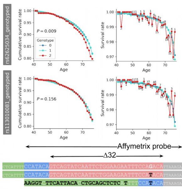 Se retracta el artículo sobre la relación de la mutación CCR5-Δ32/Δ32 y la esperanza de vida