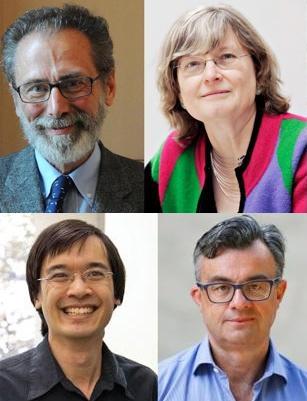 Daubechies, Meyer, Tao y Candès logran el Premio Princesa de Asturias de Investigación Científica y Técnica 2020