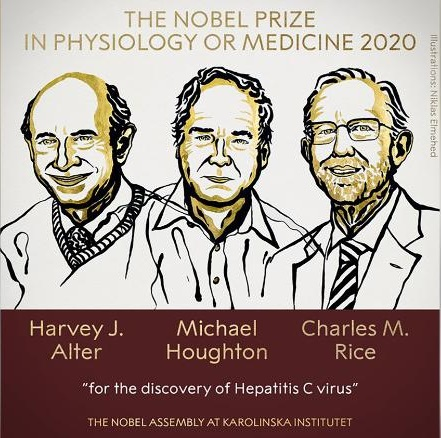 Premio Nobel de Medicina 2020: Alter, Houghton y Rice por descubrir el virus de la hepatitis C