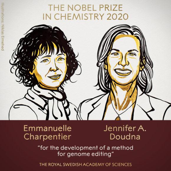 Premio Nobel Química 2020: Charpentier y Doudna por la edición genómica CRISPR-Cas9
