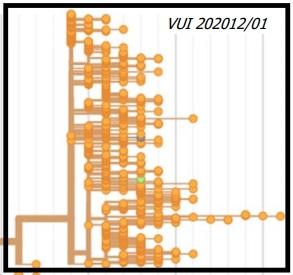 Lo que sabemos sobre la nueva variante británica VUI 202012/01 del coronavirus SARS-CoV-2