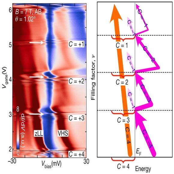 Cascada de fases topológicas en el grafeno bicapa rotado con ángulo mágico sobre diseleniuro de wolframio