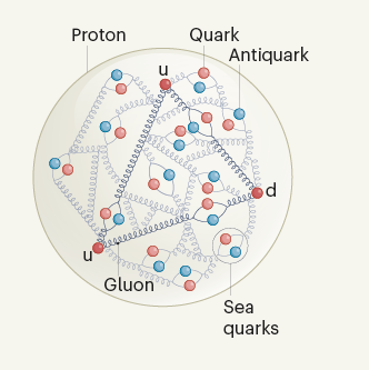 SeaQuest/E906 muestra que el protón contiene más antiquarks virtuales de tipo abajo que de tipo arriba