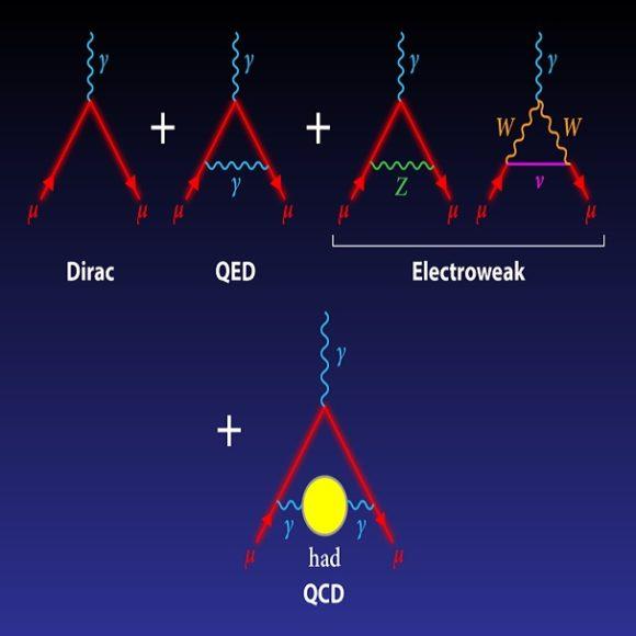 La anomalía g−2 del muón provoca un tsunami de publicaciones entre los físicos teóricos