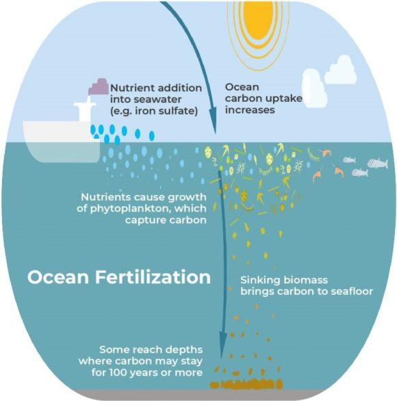 Ciencia para todos T04E06: la captura oceánica de CO₂ para mitigar el cambio climático